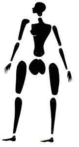 Animafro - boneca articulada