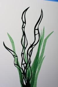 plantas Animafro