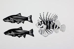peixes Animafro